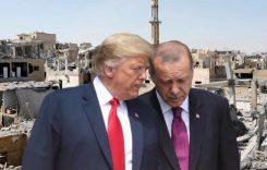Сирия: турецкие военные – в боевых порядках террористов
