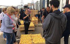 Армения и ЕАЭС: новые цены на газ и «абрикосовая война»