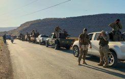 Сирия: «территориальная целостность» по-турецки и в реальности