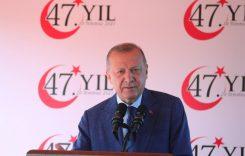 Эрдоган на Северном Кипре: «независимость» не мытьём, так катаньем?