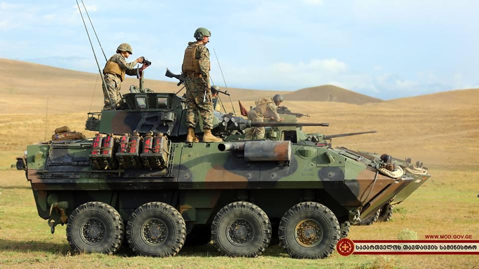 Для участия в Agile Spirit в Грузию прибыла техника Корпуса морской пехоты США. LAV-25 на полигоне Орполо