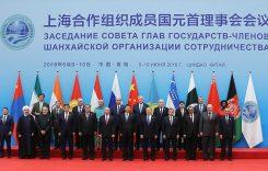 Станет ли Шанхайская Организация Сотрудничества краеугольным камнем евразийской безопасности?